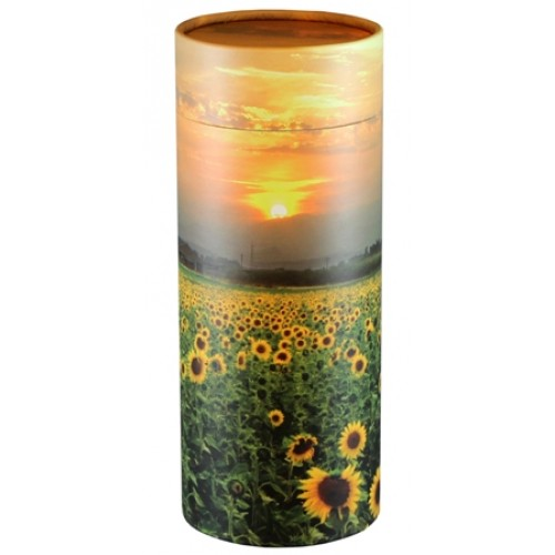 Scattering Tube – Sunflowers